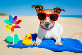 Don't take a vacation from your content marketing this summer.