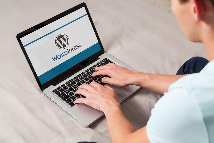 WordPress website updates